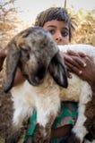 menina e cordeiro Foto de Stock Royalty Free