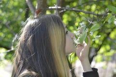 Menina e flores de cerejeira Fotos de Stock Royalty Free