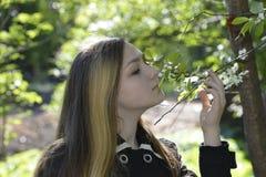 Menina e flores de cerejeira Fotos de Stock