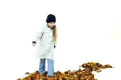 Menina e folhas de outono Foto de Stock Royalty Free