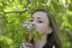 Menina e lilás Imagens de Stock Royalty Free