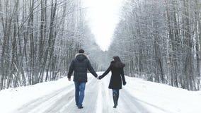 Menina e menino que andam ao longo da estrada nas madeiras Guarde as mãos vídeos de arquivo