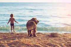 Menina e o cão na praia Fotografia de Stock