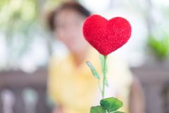 A menina e o coração vermelho no jardim romântico no alvorecer Imagens de Stock