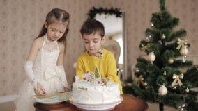 A menina e o menino decoram um bolo rapaz pequeno que beija uma menina no mordente em uma sala espaçoso e brilhante próximo video estoque