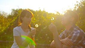 A menina e o menino que fundem um dente-de-leão florescem, sementes do dente-de-leão voam no sol, no homem feliz e na mulher no p video estoque