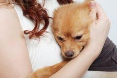 Menina e seu animal de estimação Foto de Stock Royalty Free