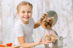 Menina e seu cão na caçarola imagem de stock