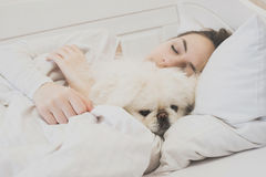 Menina e seu cão na cama fotografia de stock