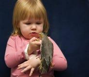 Menina e seu Cockatiel Fotografia de Stock