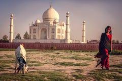 Menina e uma cabra na frente de Taj Mahal imagem de stock