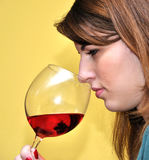 Menina e vinho Imagem de Stock Royalty Free