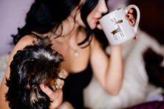 Menina e yorkshire terrier bonitos imagens de stock royalty free