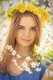 Menina em flores da cereja Imagens de Stock