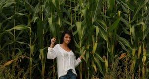 A menina em plantas de milho altas coloca filme