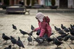 Menina em pombos de alimentação de um quadrado de cidade Fotos de Stock Royalty Free