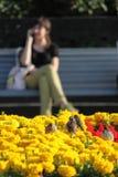 A menina em um banco no parque Fotos de Stock