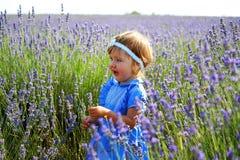 Menina em um campo da alfazema Imagens de Stock Royalty Free