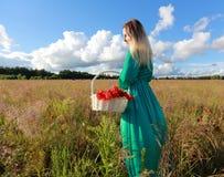 Menina em um campo da papoila Imagem de Stock