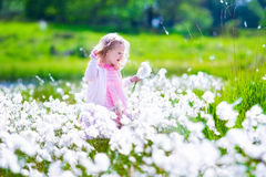 Menina em um campo de flor Fotografia de Stock Royalty Free