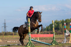 Menina em um cavalo Fotos de Stock Royalty Free