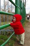 Menina em um jardim zoológico perto de uma pilha Fotos de Stock