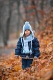 Menina em um parque do outono Imagens de Stock