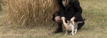 Menina em um revestimento preto e em uma camiseta bege que afagam um gato contra imagem de stock