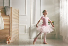 Menina em um tutu cor-de-rosa Imagens de Stock