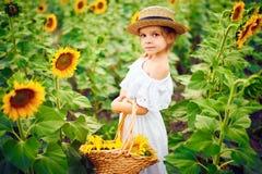 Menina em um vestido branco, um chapéu de palha com uma cesta completa dos girassóis sorrindo na câmera em um campo de foto de stock
