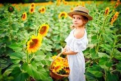 Menina em um vestido branco, um chapéu de palha com uma cesta completa dos girassóis sorrindo na câmera em um campo de imagens de stock royalty free