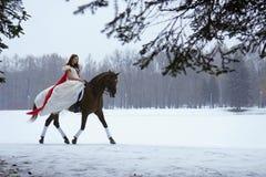 Menina em um vestido branco em um cavalo Imagens de Stock Royalty Free