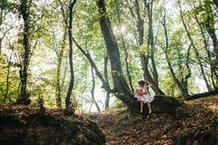 A menina em um vestido com boneca senta-se em uma árvore na floresta Foto de Stock