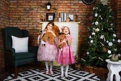 Menina em um vestido magnífico que está na árvore de Natal Fotos de Stock Royalty Free
