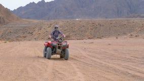 A menina em uma bicicleta do quadrilátero monta através do deserto de Egito video estoque