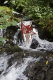 Menina em uma cachoeira Fotografia de Stock Royalty Free