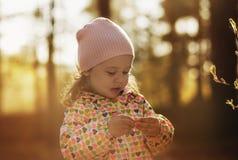 Menina em uma caminhada na floresta Imagem de Stock Royalty Free