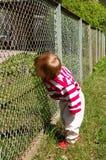 Menina em uma grama perto de uma cerca Foto de Stock Royalty Free