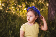 Menina em uma grinalda das centáureas Fotografia de Stock Royalty Free