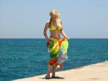 Menina em uma praia do mar Foto de Stock