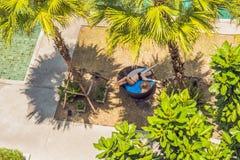 Menina em vadios do sol entre palmeiras perto da piscina foto de stock royalty free