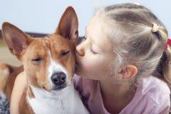 Menina encaracolado loura pequena que abraça e que beija o cão do basenji foto de stock royalty free