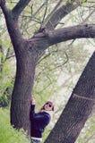 Menina entre árvores Imagem de Stock
