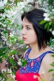 Menina entre as árvores de florescência Imagem de Stock