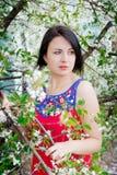 Menina entre as árvores de florescência Fotos de Stock Royalty Free