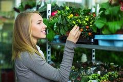 A menina escolhe flores imagem de stock royalty free