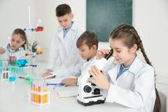 Menina esperta que olha através do microscópio e dos seus colegas foto de stock royalty free