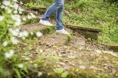 A menina está andando abaixo das etapas velhas cobertos de vegetação com o musgo e a grama Fotos de Stock