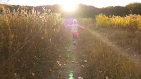 A menina está andando ao longo da estrada através do campo para o por do sol Vídeo no movimento lento video estoque