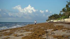 A menina está andando na praia na manhã que evita o sargaço video estoque